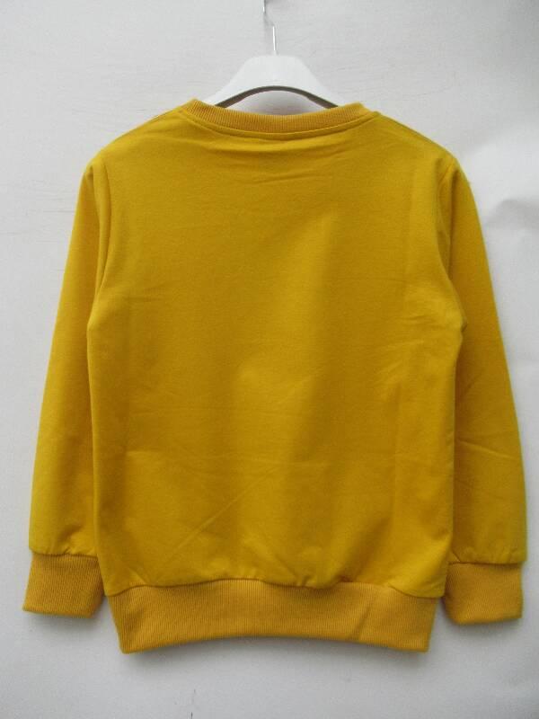 Bluza Dziecięca 01135A MIX KOLOR 2-8 2