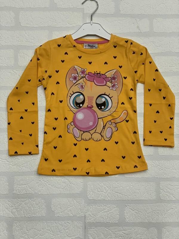 Bluzka Dziecięca IMG61203  1 KOLOR 1-4