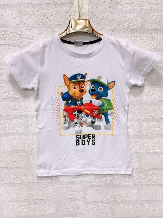 Bluzka Chłopieca F1701 MIX KOLOR 4-8